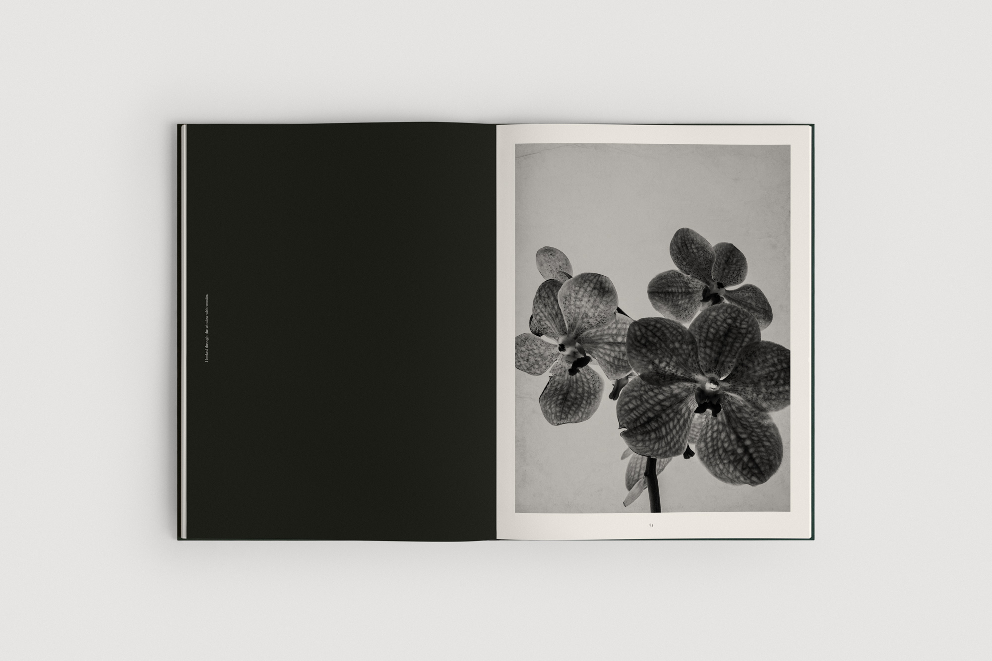 Jonas-Bjerre-Poulsen-The-Reinvention-of-Forms-Book-Packshots-Web-08